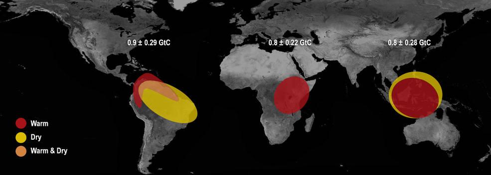 Les effets d'El Ninon sont différents en fonction des régions du globe © NASA